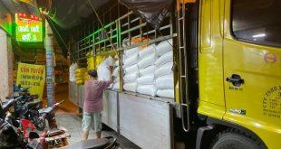 Tìm Nguồn Cung Cấp Gạo Giá Sỉ Tại TPHCM